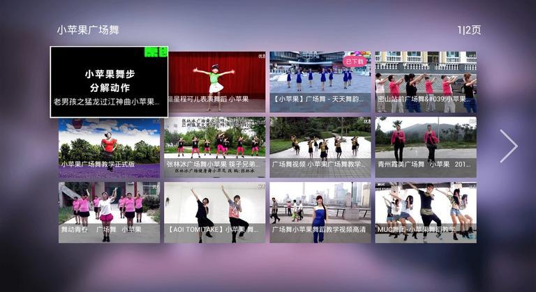 广场舞大全TV版下载图3:
