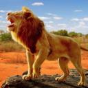狮子王模拟器无限升等级版