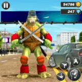 龟忍者英雄