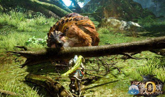 《怪物猎人OL》疾风狩猎祭玩家总结心得
