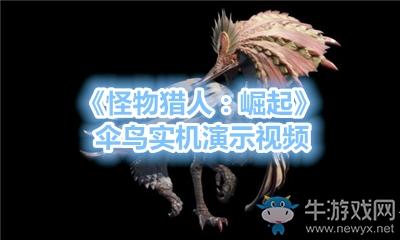 《怪物猎人:崛起》伞鸟实机演示视频