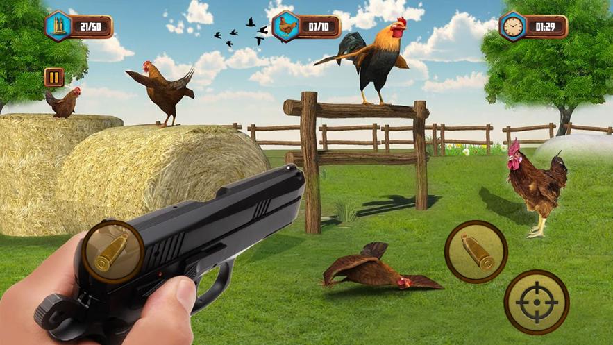 Bird Hunting Shooting Game