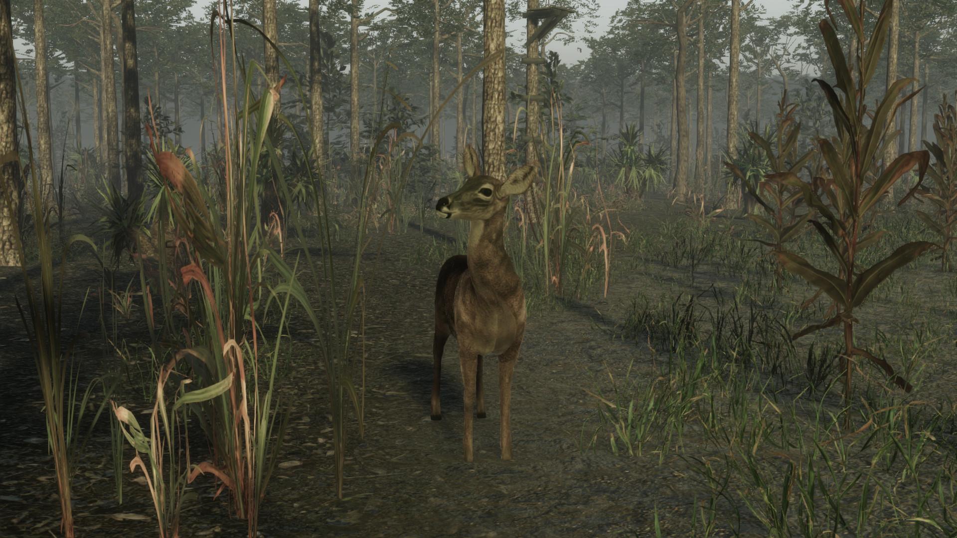 职业猎鹿人2