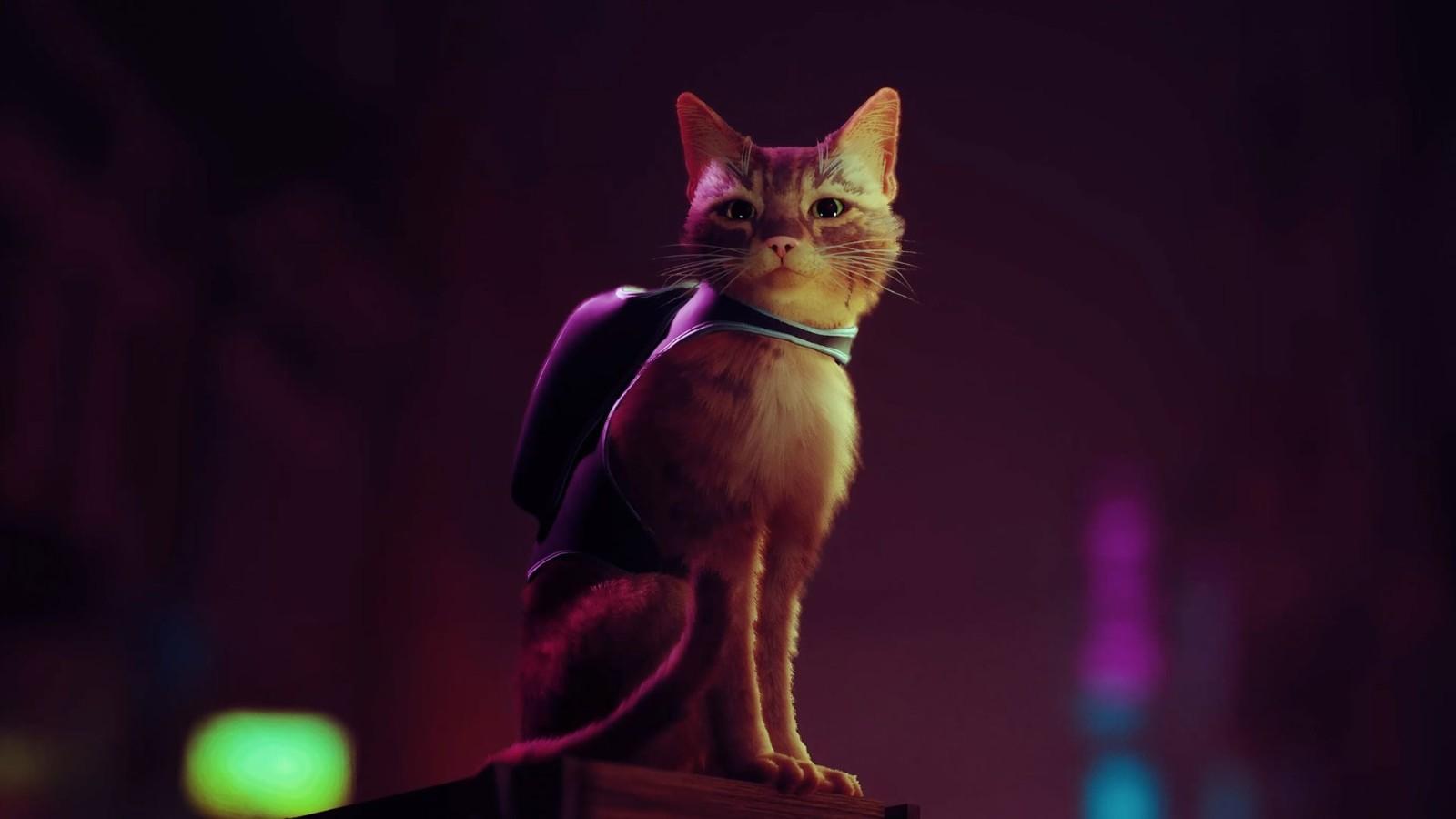 第三人称猫猫冒险《迷失》实机演示
