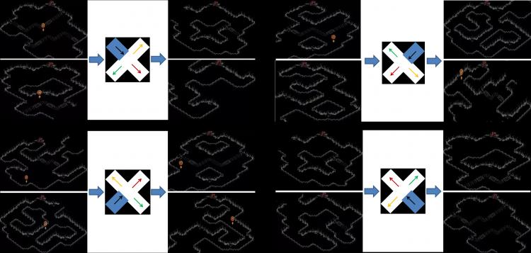 《暗黑破坏神2重置版》第一章全地图迷宫走法攻略教学