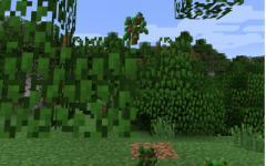 《我的世界》1.12.2砍树使树叶快速腐烂MOD